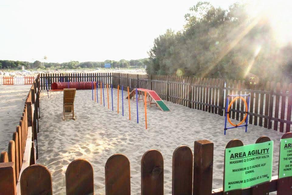 Area-agility-spiaggia-di-duke-per-cani-mare-lignano-friuli-1